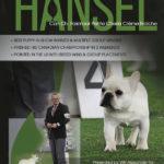 Hansel ad version 2