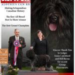 Mayes_(Lewis Dutch Sheepdog)_04-01-15