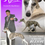 McIntyre_(Rylie Whippet)_04-01-2015