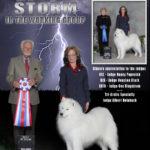 Parry_(Storm Samoyed)_04-08-2015