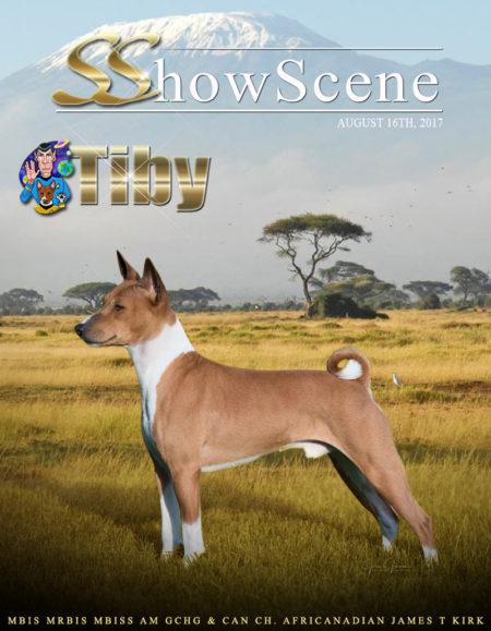 Behles_(Tibby Basenji) 08-16-2017 COVER