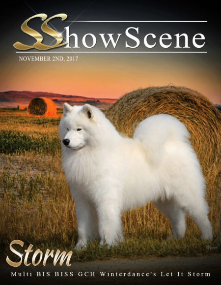 Parry_(Storm Samoyed)_11-01-2017 COVER